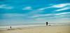 seaside new jersey (Luis Fanlo) Tags: new blue trees red sky dog color art film beach sports fashion animals cali architecture canon vintage landscape design nikon tech blind lol smoke shit jersey sucks d200 now obama binladen strobe grean d40 b600 d700 d300s
