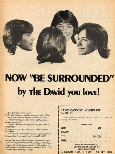 Vintage 1970s David Cassidy Iron On Transfer// Patch