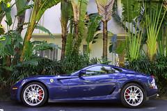 599. (Alex Weber) Tags: motion alex car speed canon photography shot ferrari spot exotic 7d expensive panning rare find weber gtb 599 599gtb