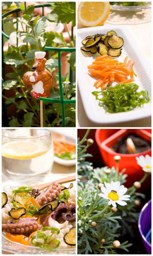 Collage Insalata di Polpo, orzo e verdure