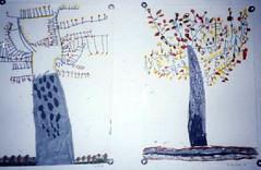 alberi alla sc. infanzia