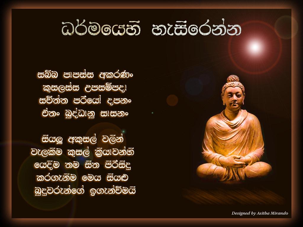 Vesak Card Asitha Mirando Tags Buddha Lord Wesak Asithamirando Vesakcard