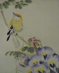 Bird and Wisteria