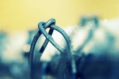 Chain-link Heart (team sass) Tags: snow fence morninglight wire dof heart twist chainlink