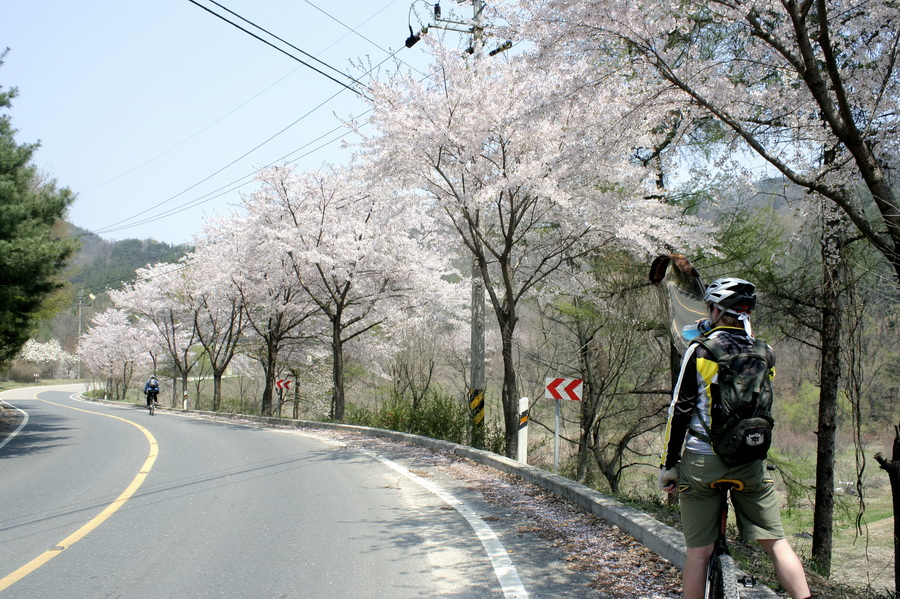 Daecheong Lake road(1)