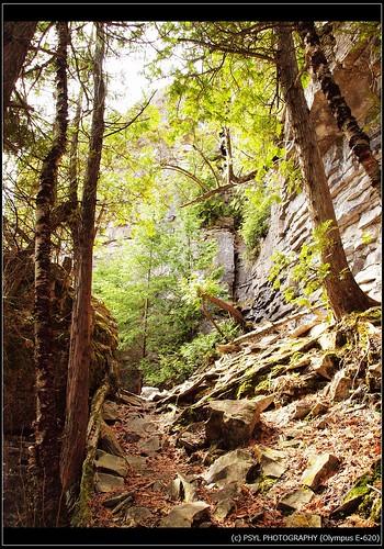 Trail in Bruce Peninsula National Park