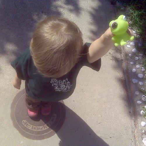 Frog Offering