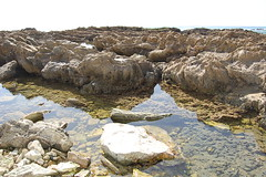 tidepool7 (timwinter79) Tags: range tidepools tidepool tidal sanpedrotidepools
