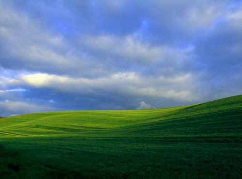 フリー写真素材, 自然・風景, 丘, ドイツ,