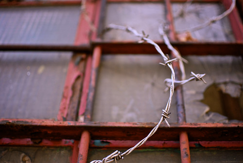 Barbed Wire And Broken Window