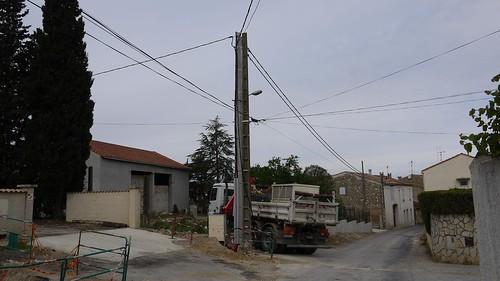 P1050450 Bis