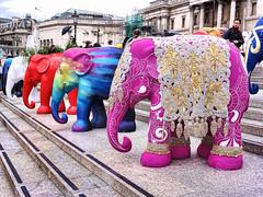 Elephants (BUMBOO.CO.UK) Tags: africa india color colour london art african indian trafalgar elephants
