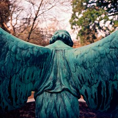One step behind (melquiades1898) Tags: friedhof 120 6x6 film angel analog germany hessen hasselblad engel darmstadt 100asa rollfilm rosenhhe hasselblad500cm mittelformat kodakektar farbfilm carlzeissplanar2880