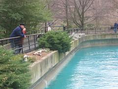 IMG_0939 (superdubey) Tags: zoo dc washington national dc08