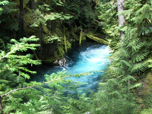 Geomorphology Field Trip: McKenzie River