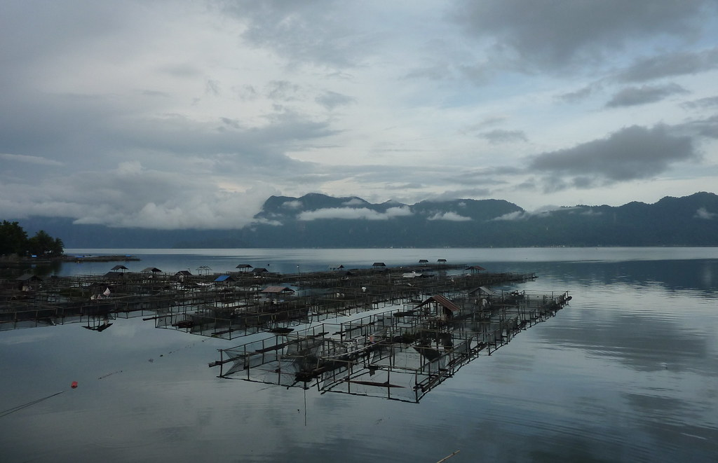 Sumatra-Lac Maninjau (192)