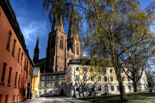 Uppsala. Catedral y árbol