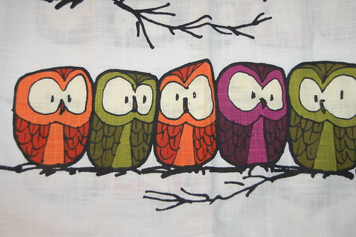 Row of owls