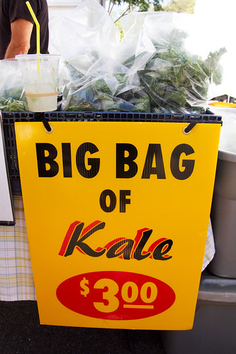big bag of kale