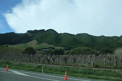 hills on the road to Taupo