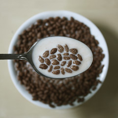 choco rice (donchris!) Tags: macro up de milk focus dof close candy rice bokeh chocolate reis spoon bowl lait latte cereals cereales schokolade cornflakes unscharf leche lffel cioccolato kelloggs choc nahaufnahme chocolat riz arroz riso milch cuillre musli muesli schale cucchiaio cuchara msli ry getreide fiocchi maz czekolada unschrfe cereali cscara mleko davena crales yka hojuelas patki zb kukurydziane