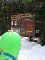 Waldo in front of the Tuckerman Ravine Avalanche Advisory sign.
