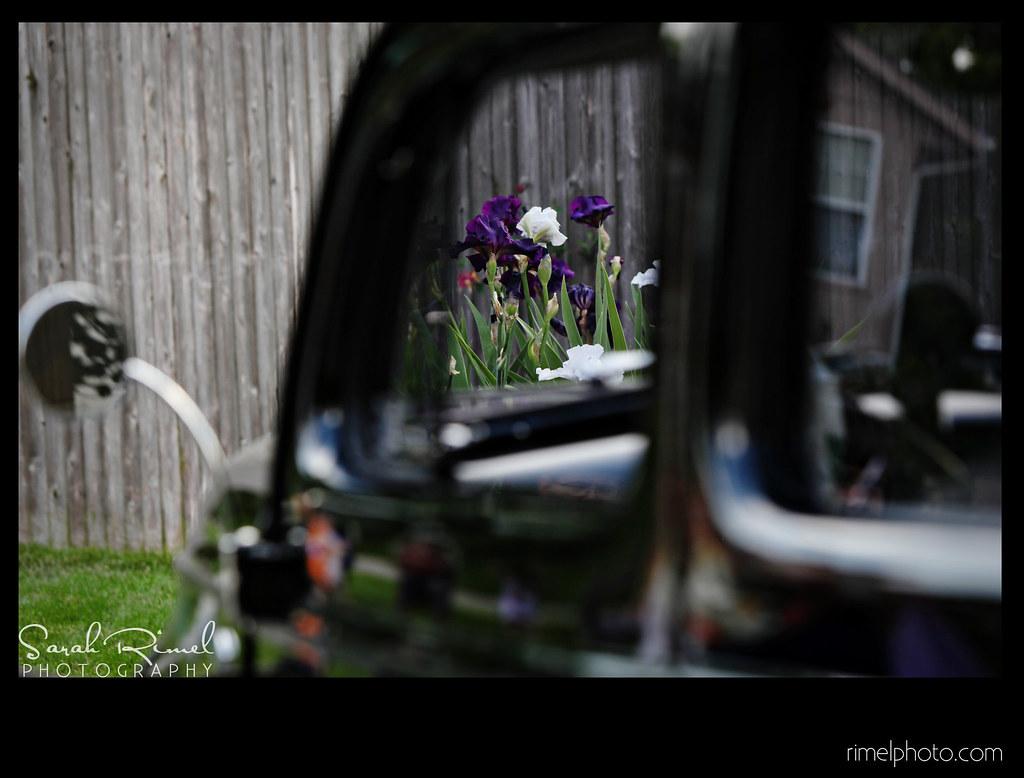trudy 05-2010 29