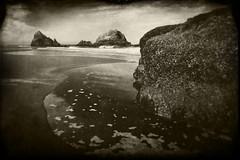 (RevellRay) Tags: sanfrancisco sealrocks deadmans wordless