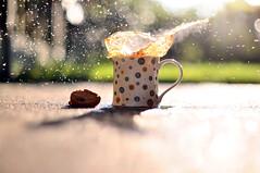 cookie splash (iamwithoutshoes - PLEASE USE NEW ACCOUNT) Tags: summer sun coffee grass garden 50mm nikon warm cookie dof bright tea bokeh chocolate 14 steam biscuit splash 18 tones d90 cookiesplash