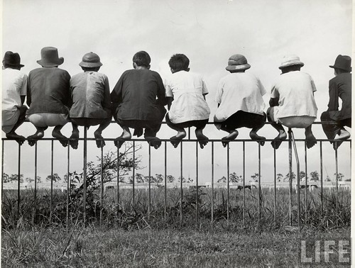 SAIGON March 1949 - Vietnamese men perching like birds atop an iron fence to watch the Sunday pony races.