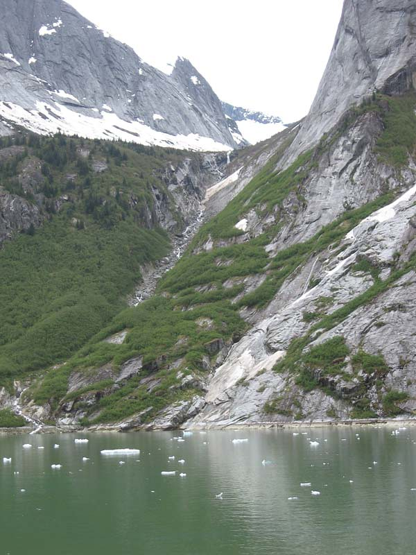 Scenic cruising in Tracy Arm Fjord