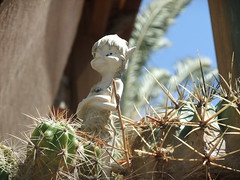 little prick (dogfishcronin) Tags: cactus gnome pixie elf prick