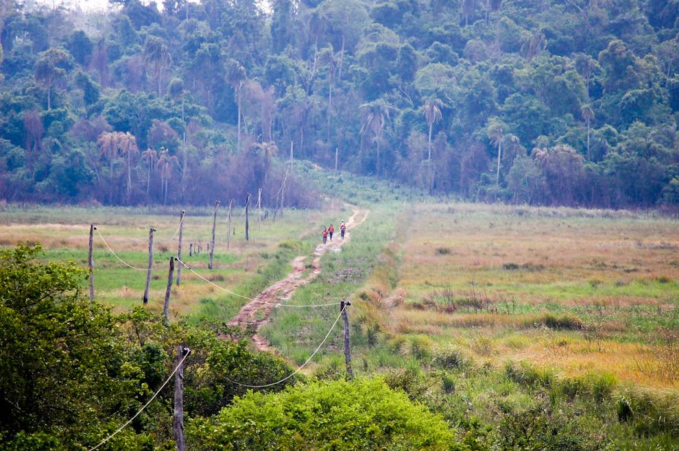 El equipo EXPY encabezando el primer puesto en la etapa de Trekking antes de llegar al Puesto de control en la Reserva Itákyrý, sol y humedad fueron los principales factores del desgaste de los equipos. (Elton Núñez - Itákyrý, Paraguay)