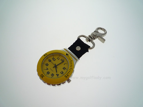 Clip on watch