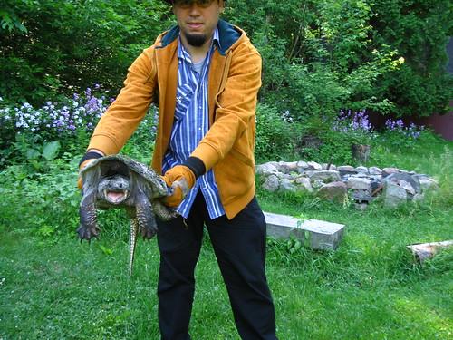 Turtle found