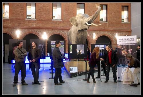 Remise des prix au Muséum de Toulouse