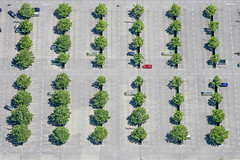 Red Car - 115 (Aerial Photography) Tags: by in obb 02072006 5d008219 amwestpark audi auto automobil baum baumreihe bäume fotoklausleidorfwwwleidorfde grau grün ingolstadt laubbaum linien luftaufnahme luftbild pkw parken parkplatz reihen rot verkehr aerial automobile car deciduoustree foliagetree green grey leaftree lineoftrees lines outdoor red redcar rotesauto rowoftrees rows traffic tree trees vehicle verde bayernbavaria deutschlandgermany deu