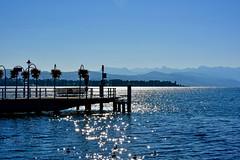 Contre jour matinal (Diegojack) Tags: morges vaud suisse paysages léman brillance contrejour silhouette débarcadère