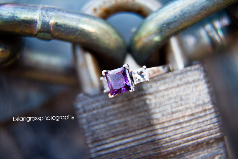 brian_gross_photography bay_area_wedding_photographer engagement_session livermore_ca 2009 (3)