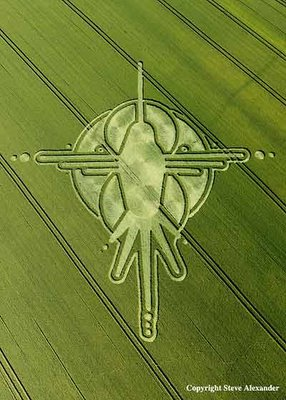 The Humming Bird Nazca Lines Peru Crop Circle Reported July the 2nd at Milk Hill, near Stanton St Bernard, Wiltshire