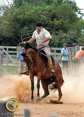 IMG_6145 (Edu Rickes) Tags: brazil horses brasil caballos rodeo cavalos rs riograndedosul gaúchos gaúchas beautifulshots piratini gineteada canon450d brazilianphotographers fotógrafosbrasileiros tirodelaço todososdireitosreservados fotógrafosgaúchos culturagaúcha edurickes belasimagens rodeiogaucho edurickesproduçõesfotográficas canonrebeldigitaleosxsi copyright©2010 fotografiaslegais
