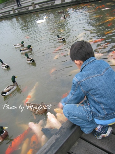 2009 12 20_11羅東運動公園.JPG