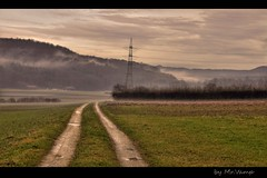 Feldweg (Mr.Vamp) Tags: wood winter mist tree nature fog forest wow landscape haze track nebel path natur environment landschaft wald hdr vamp feldweg weg umwelt timbered nrtingen contryroad oberboihingen scebery farmpath mrvamp