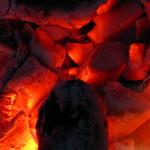 25.12.2009 018 thumbnail