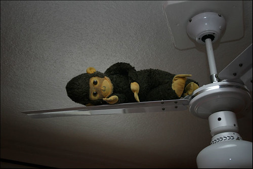 Affe auf dem Ventilator