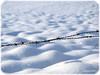 Moving forward, dont stop (alltagspoetin) Tags: schnee winter white snow zaun