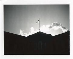 .. (Jösé) Tags: winter sky blackandwhite bw building silhouette flag universityoftoronto steam pole uoft convocationhall epsonv700 fujifp100b polaroidland250