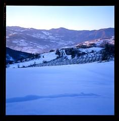 Val Trebbia, vigna Forno di Sotto (Marco Pecorini) Tags: rollei val neve piacenza sotto forno coli velvia50 trebbia parcellara rolleiflex35