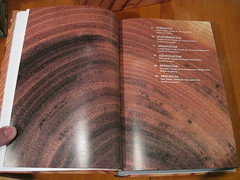 The Woodbook's first section of plates' TOC