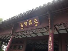 china221